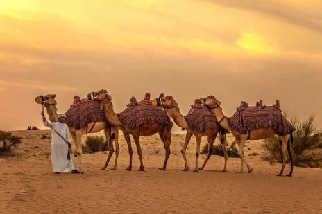ARECTARE_dubai-desert-circuits-emirats-arabe-unis-tui